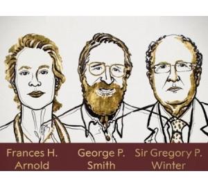 Нобелевская премия по химии: проведем эволюцию сам