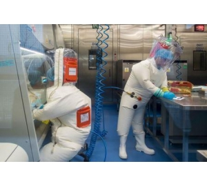 Ученые из Уханя действительно создали «искусственный» коронавирус — но не тот