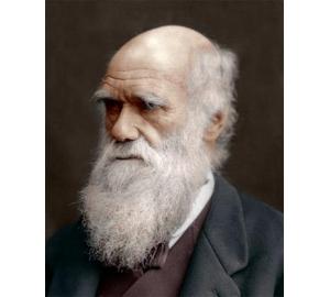 Ученые доказали одну из главных эволюционных теорий Дарвина